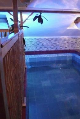 cazare-piscina-pensiunea-poarta-ariesului-arieseni-bihor