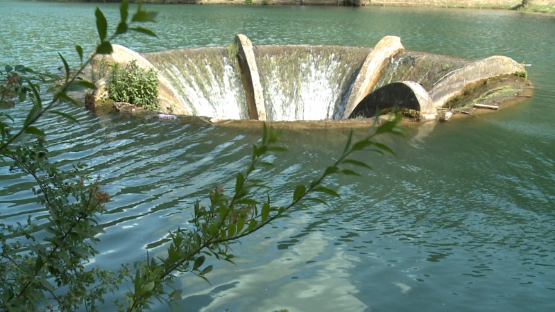 lacul vida paradisul fara turisti din bihor dobresti